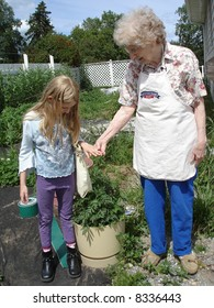 Little girl in the garden with Granny