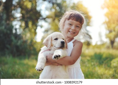 Little girl with a Golden retriever puppy. A puppy in the hands of a girl
