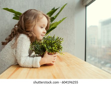 Little girl with a growing flower in her hands looking out the window, the concept of save the planet, the ecosystem, green life.