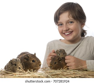 little girl and her pet a guinea pigs - white background