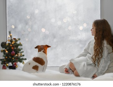 Little girl and her puppy jack russell sitting by the window and looking on first falling snow on early Christmas morning.