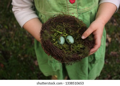 Little girl holding a birds nest with 2 eggs