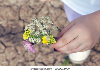 Little girl holding a flower, with ladybug perched on it.