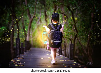 little girl holding lamp light walks on the wooden bridge in the forest of fen marsh see bundle of firefly in early dark of the night, field trip for a kids school learning the nature for kids school
