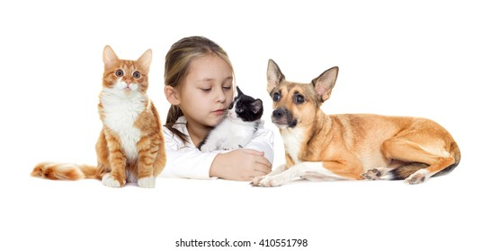 little girl and kitten and a cat and dog