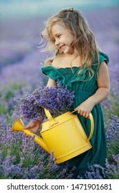 Little girl in the lavender field.