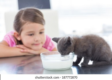 Little girl looking at kitten drinking milk from bowl