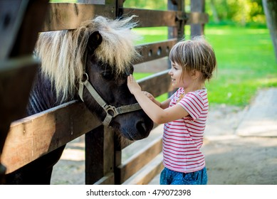 The little girl looks after the little pony