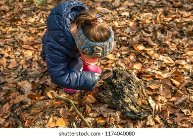 Little girl with a magnifying glass investigating in the Amsterdamse bos forest in the Netherlands.