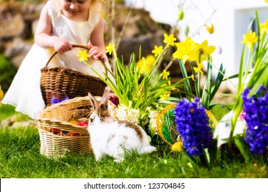 Little girl on an Easter Egg hunt on a meadow in spring, in the foreground a living Easter bunny is waiting