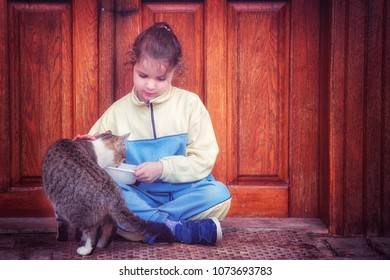 Little girl petting a small cat and making friends