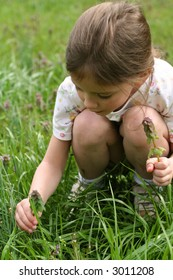 little girl picking wildflowers in the spring