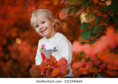 Little girl playing with autumn leaves in the park. Happy child with a bouquet of leaves in the forest.