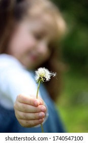 Little girl playing with dandelions on meadow