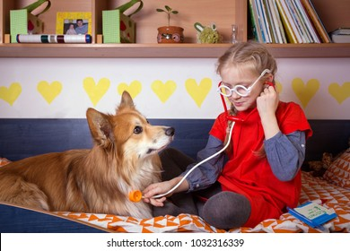 little girl playing doctor with her dog corgi fluffy