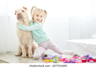 Little girl is playing with a dog in the room. The concept of lifestyle, childhood, upbringing, family.