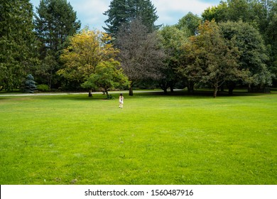 A little girl is playing on the green lawn in the garden.
