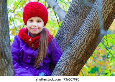 little girl playing on a tree in an autumn park
