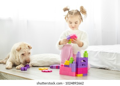 A little girl is playing plastic toys blocks. The dog lies. The concept of lifestyle, childhood, upbringing, family.