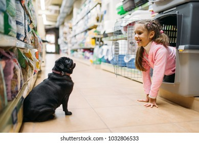 Little girl plays with puppy in pet shop