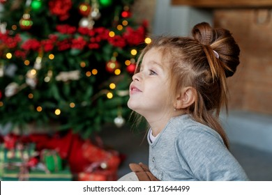 The little girl is pleased with the house. The concept of a Merry Christmas, holiday, family.