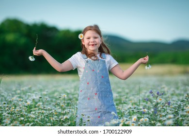 Little girl posing on a field of flowers camomile. Summertime vacation fun in rustic vilage