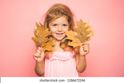 Little girl are preparing for autumn kids sale day. cute girl in a autumn seasonal clothes. Autumn time. Season and autumn holiday. Little girl isolated on background board for Copyspace