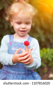 little girl with raspberries on her fingers