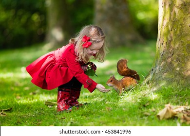 Little girl in red trench coat and rain boots feeding squirrel in autumn park.