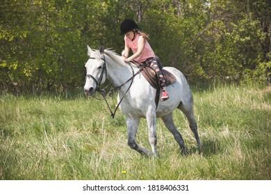 Little girl rides a white horse breed Orlov trotter