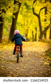 Little girl riding a bicycle in the park on the road covered with autumn oak and maple trees.Back view of Little child in blue coat riding a bicycle.Cyclist in autumn park.Girl biking in city park