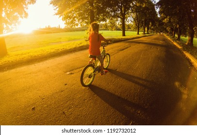 Little girl with riding bike at sunset
