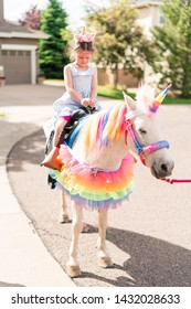 Little girl riding a unicorn at the little girl birthday party.