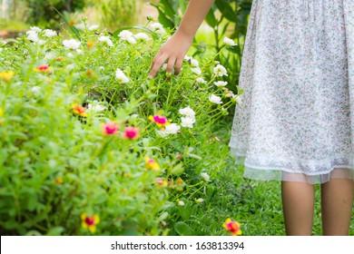 little girl 's hand touching flowers in a garden