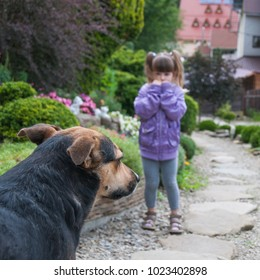 Little girl is scared by a dog.