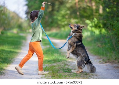 Little girl schooling dog outdoor