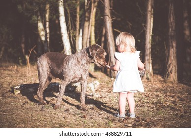 Little girl sharing water with her dog Friend. Positive emotions.Best friends concept.
