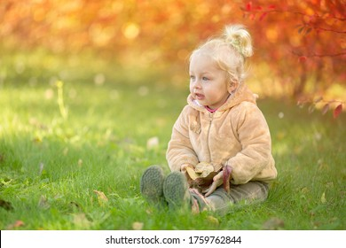 Little girl sits in a clearing. Gold autum . Image with selective focus and toning.