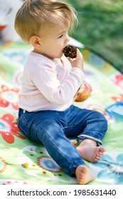 Little girl sits on a colored blanket on a green lawn and gnaws a pine cone. Close-up. Side view