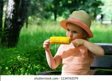A little girl is sitting on a bench and eating corn cob. A beautiful child in a straw panama.