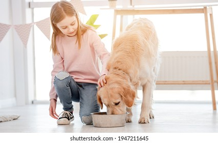 Little girl sitting on the floor and looking how golden retriever dog eating