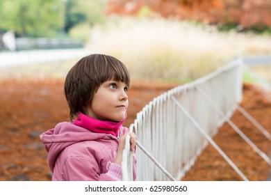 Little girl standing in autumn park