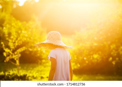 Little girl in straw hat walks in summer garden illuminated by the warm golden sunset light.