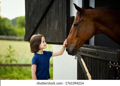 Little girl strokes a beautiful horse in the barn in summer