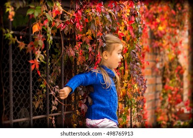 23561a43ca7d little girl in stylish and fashionable clothes on a beautiful background of autumn  wild grapes,