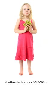 Little girl takes bunch of grape. Isolated over white