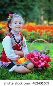 Little girl in traditional bulgarian cloth picking flower for perfume and oil in garden. Festival of Roses Harvest in Valley of the Roses undertaken with great ceremony is notable Bulgarian holiday