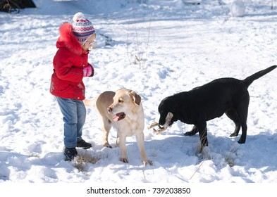 Little girl and two dogs outdoors. A child is playing with pets on the snow.