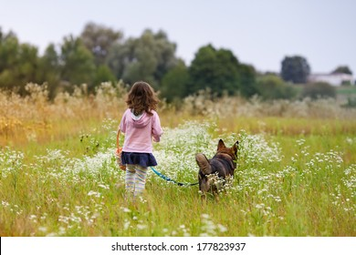 Little girl walking with dog back to camera