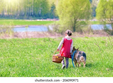 Little girl walking and going to picnic with dog back to camera